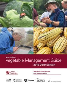 veg guide