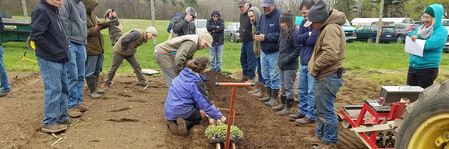 people observing how to plant