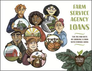 Farm service agency loans guide