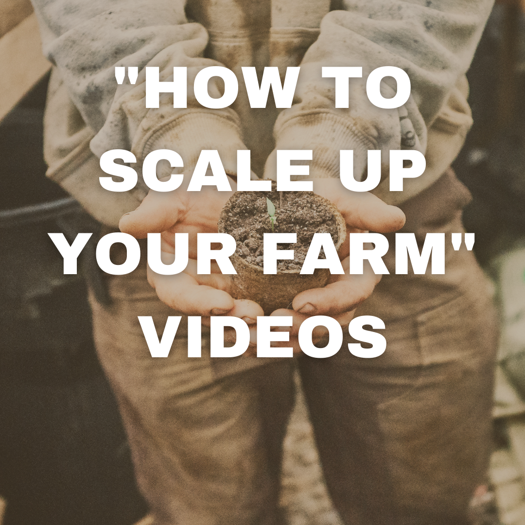 HOW TO SCALE UP YOUR FARM VIDEOS