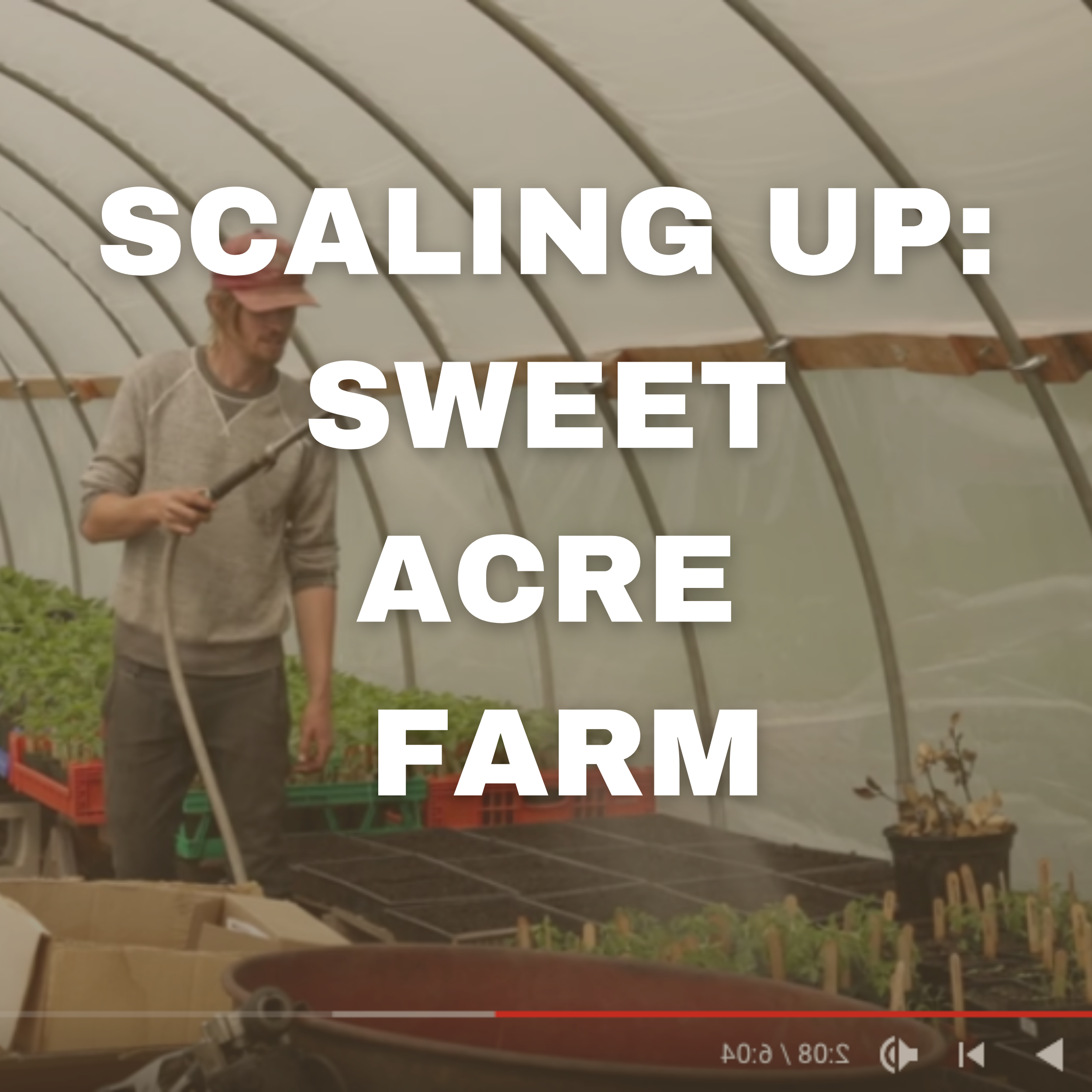 SCALING UP: SWEET acre farm