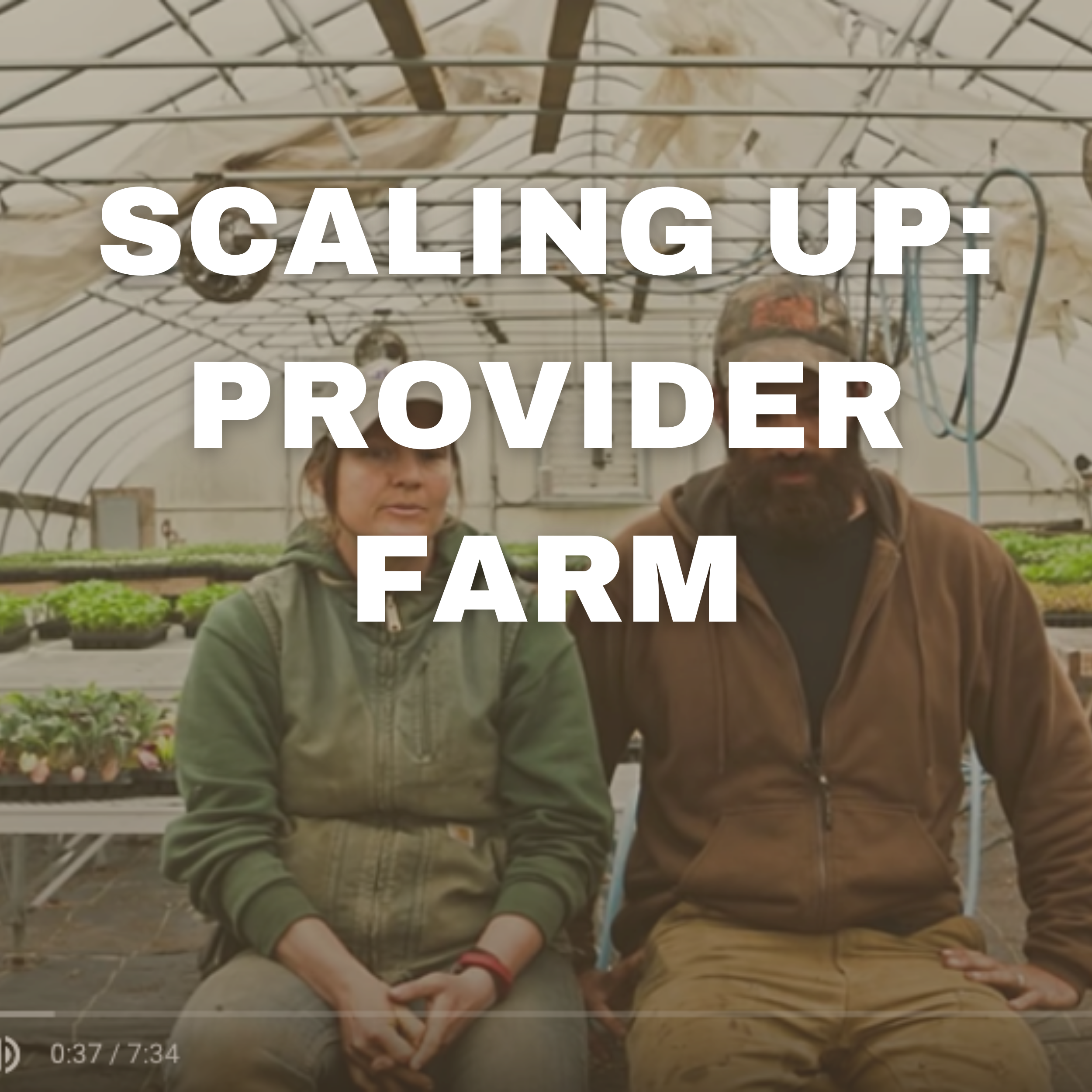 SCALING UP: PROVIDER FARM