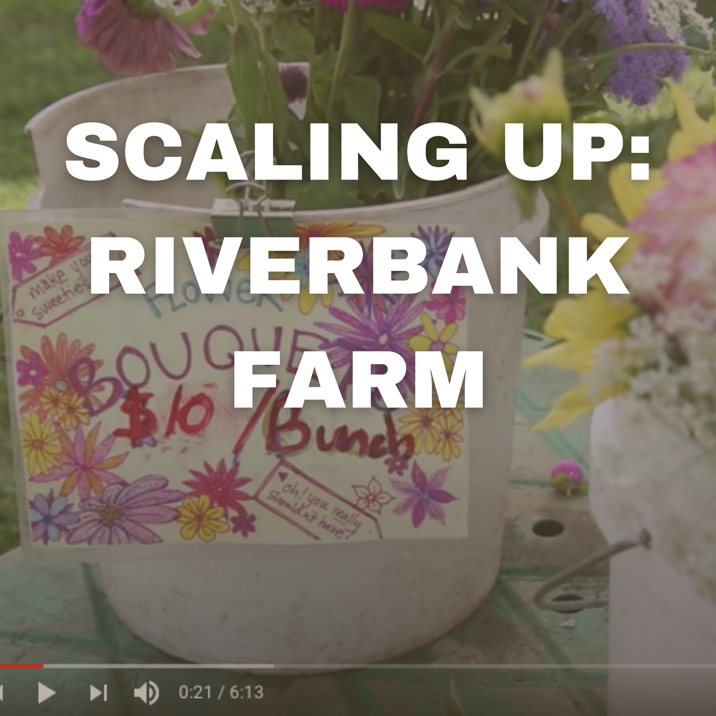 SCALING UP: RIVERBANK FARM