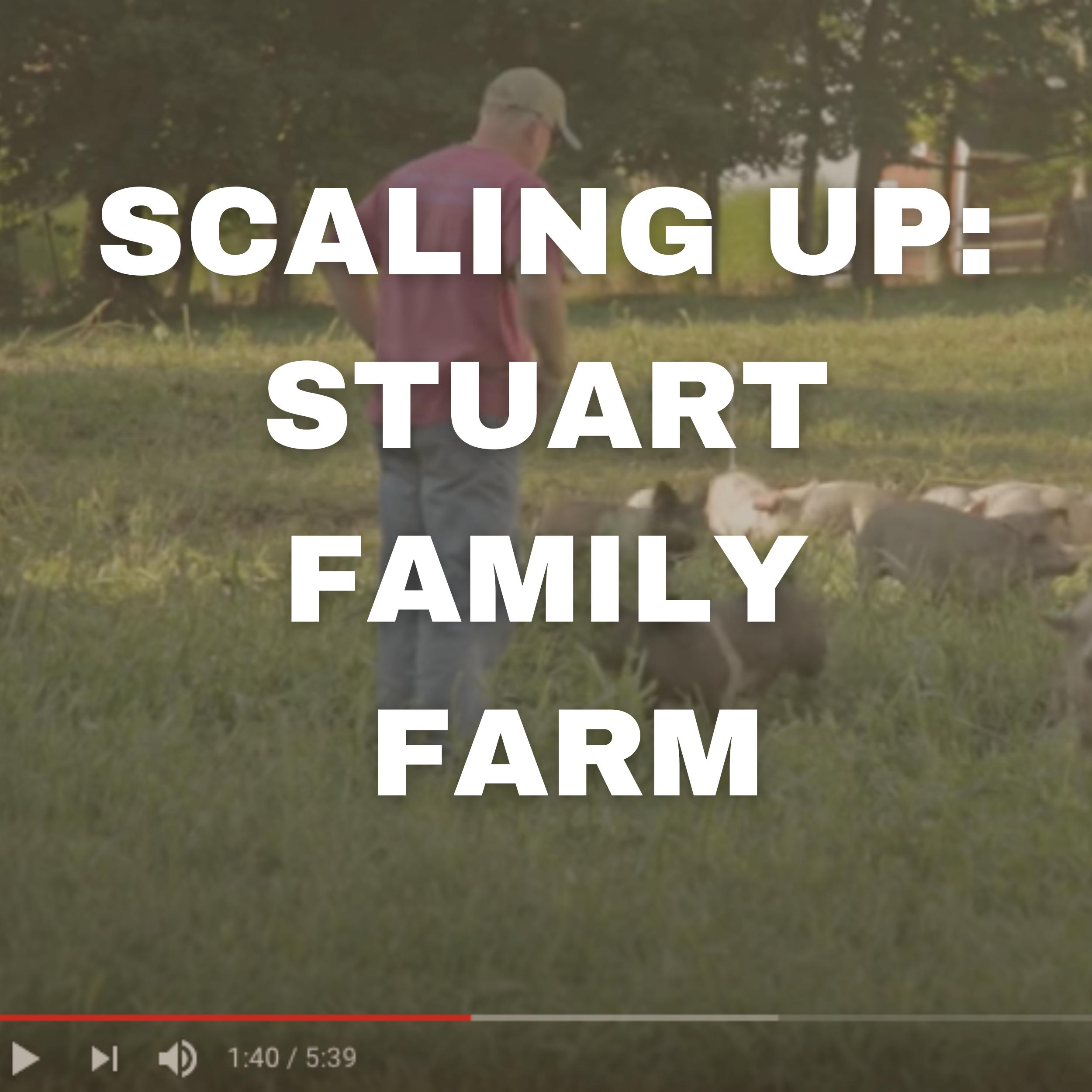 SCALING UP: STUART FAMILY FARM