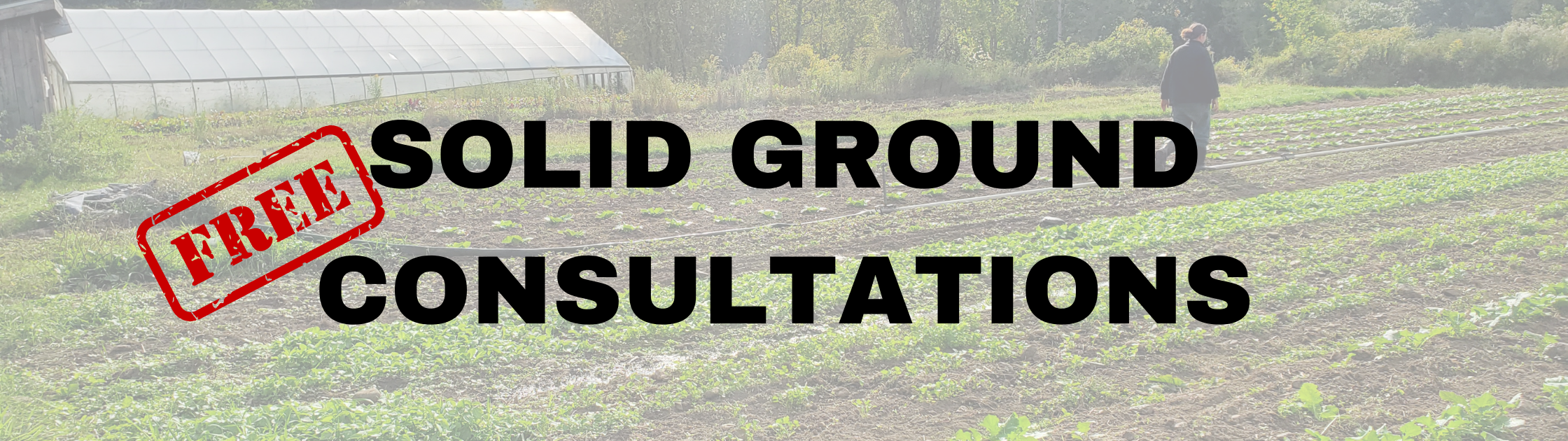 Solid ground free consultations
